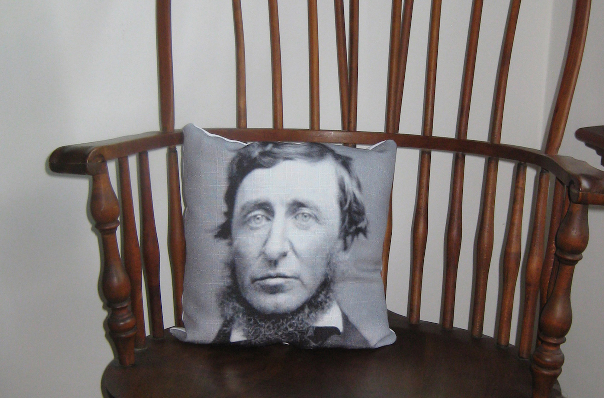 Thoreau Pillow